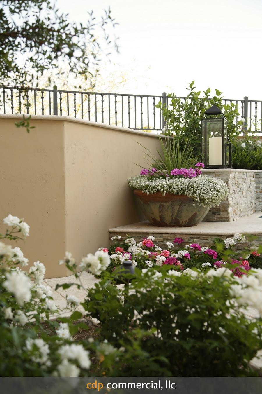 desert-springs--residential-landscaping-cd18645