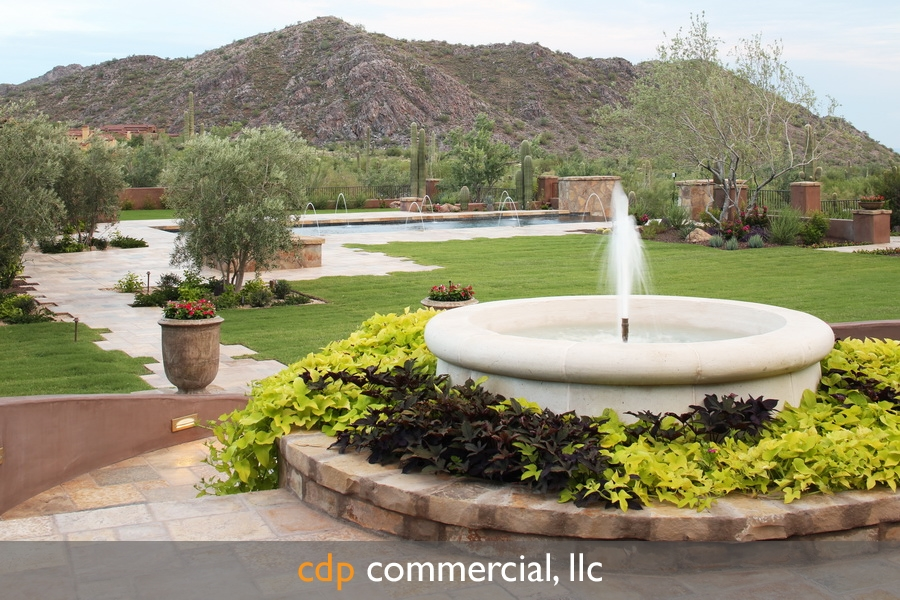 silver-leaf--desert-springs-ourdoor-environment-copyright-2014-cdp-commercial-llc-this-image-is-only-granted-to-the-company-that-purchased-this-image-these-rights-are-nontransferable-to-any-party-this-images-may-not-be-distributed-shared-given-borrowed-or-sold-in-any-manner-to-other-parties-as