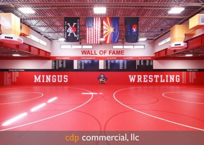 portfolioschools-mingus-high-school-wrestling